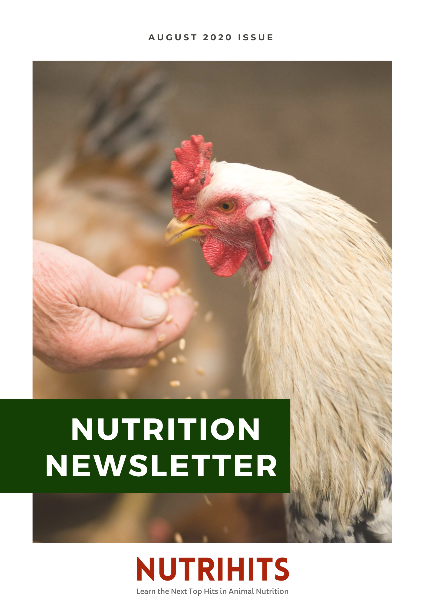 Nutrition Newsletter, August 2020