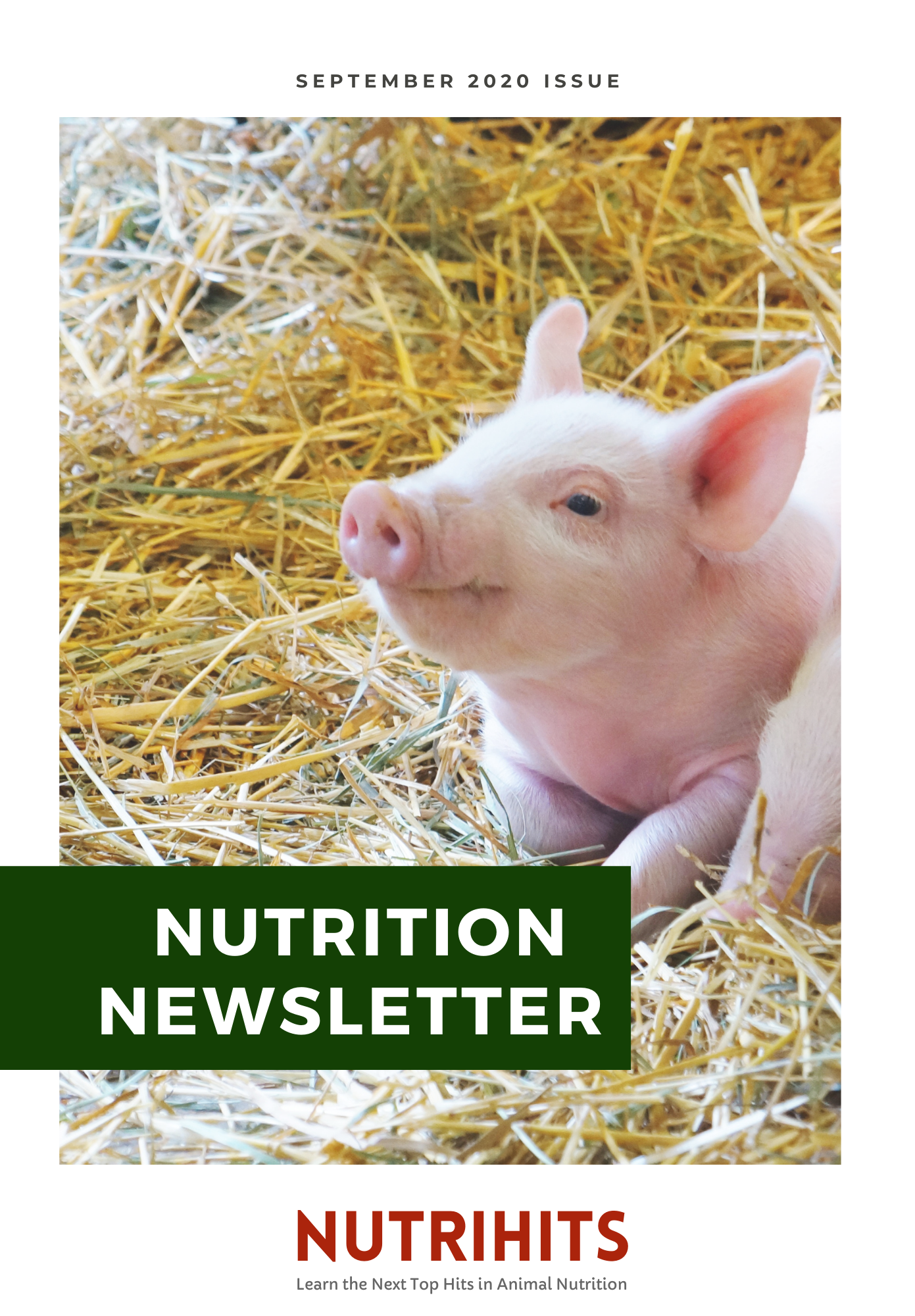 Nutrition Newsletter - September 2020