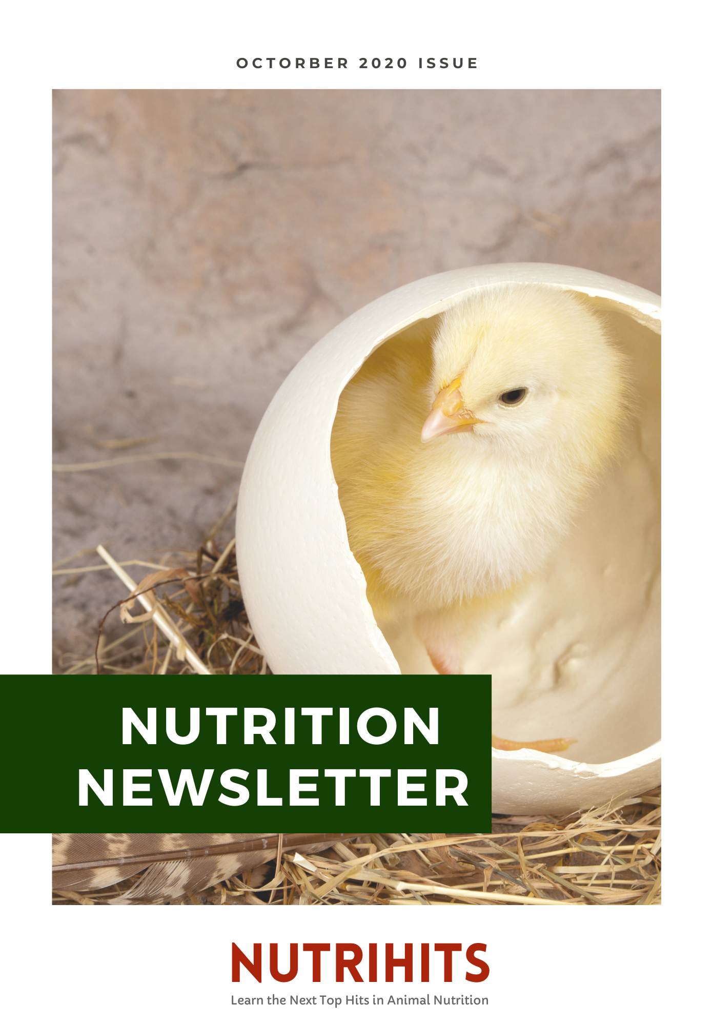 Nutrition Newsletter - October 2020