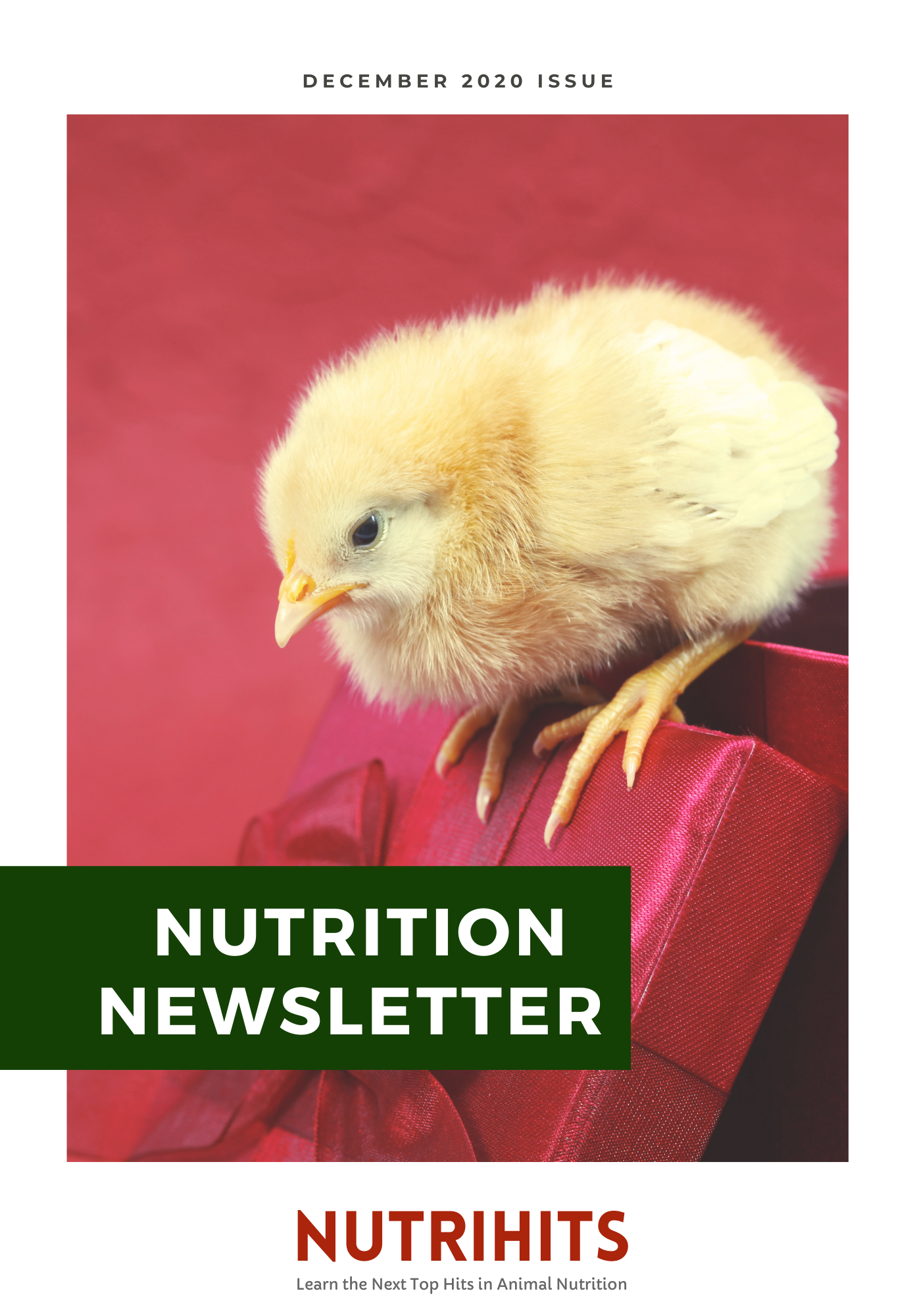 Nutrition Newsletter - December 2020