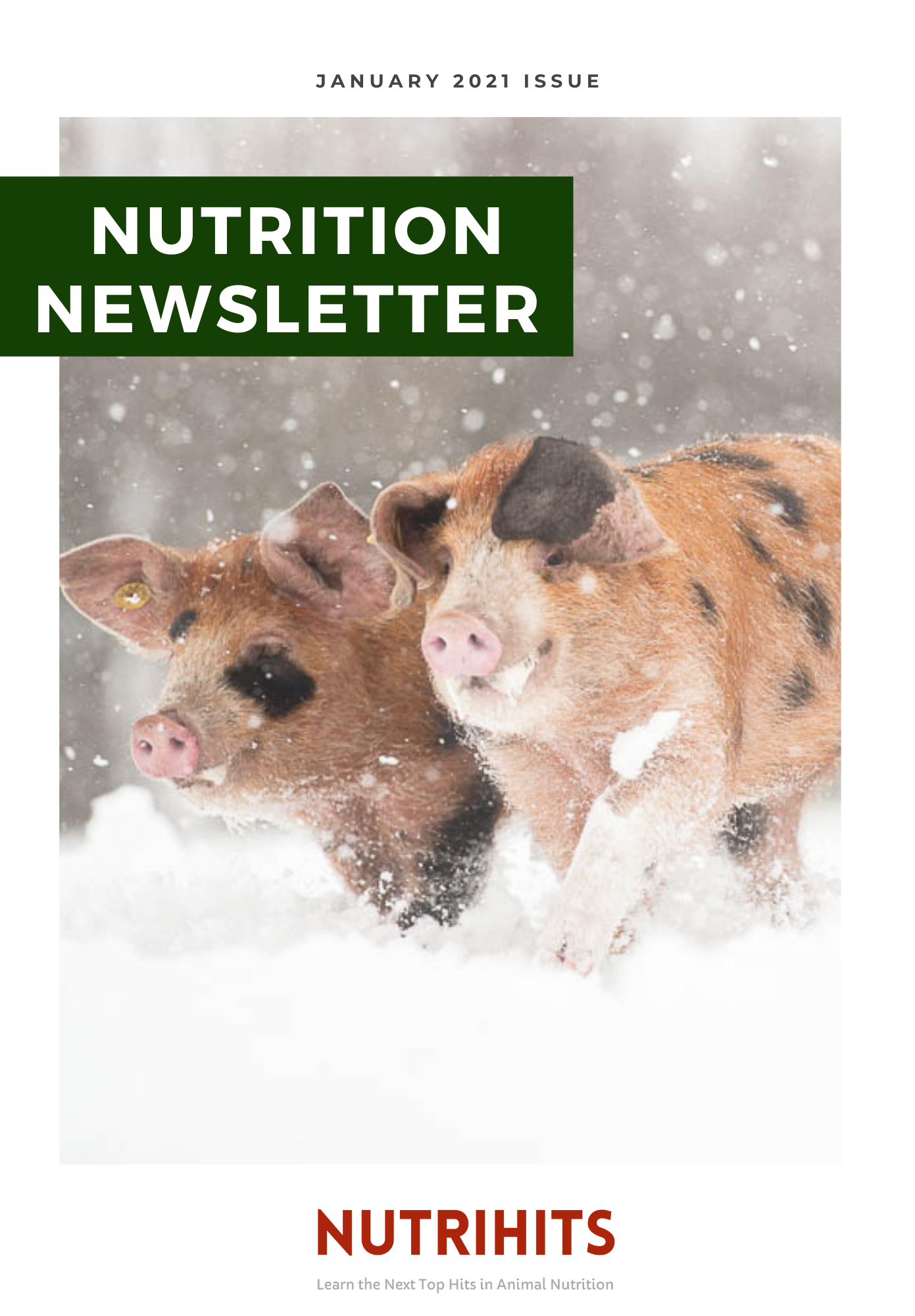 NUTRITION NEWSLETTER - January 2021